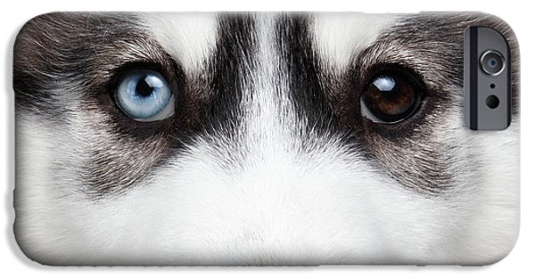 Closeup Siberian Husky Puppy Different Eyes IPhone 6s Case by Sergey Taran