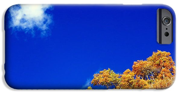 IPhone 6s Case featuring the photograph Colorado Blue by Karen Shackles