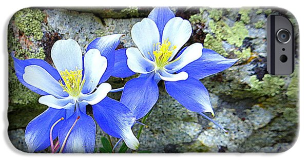 IPhone 6s Case featuring the photograph Colorado Columbines by Karen Shackles