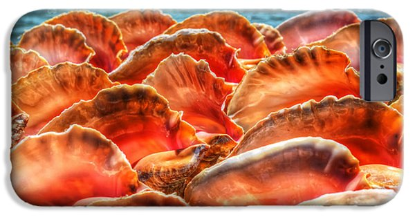 Conch Parade IPhone 6s Case