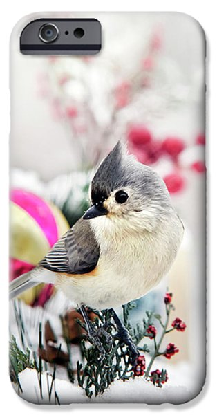 Cute Winter Bird - Tufted Titmouse IPhone 6s Case by Christina Rollo
