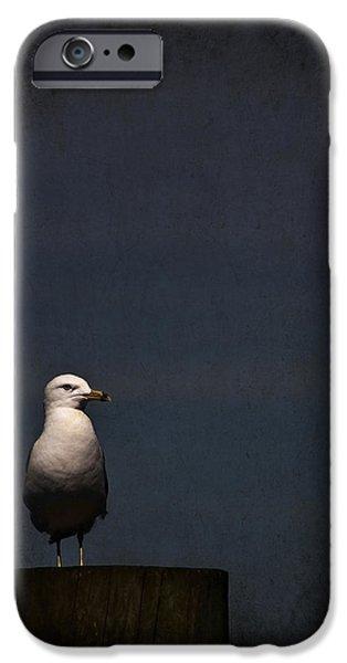 New England Coast iPhone 6s Case - Darkness Falls by Evelina Kremsdorf
