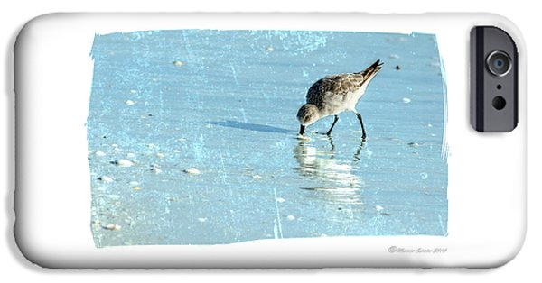 Sandpiper iPhone 6s Case - Dig In by Marvin Spates