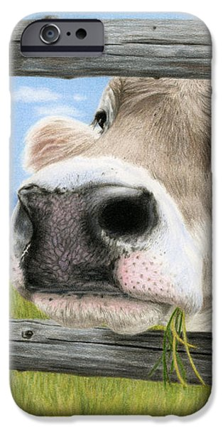 Color Pencil iPhone 6s Case - Don't Fence Me In by Sarah Batalka