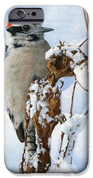 Downy Woodpecker  IPhone 6s Case by Ken Everett