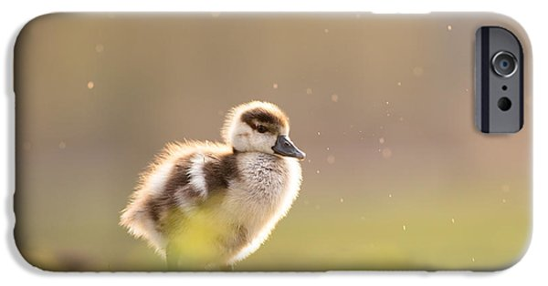 Gosling iPhone 6s Case - Dreamy Duckling by Roeselien Raimond
