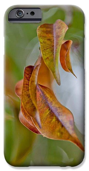 New Leaf iPhone 6s Case - Drifting Away by Az Jackson
