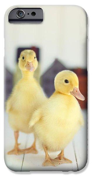 Ducks In The Neighborhood IPhone 6s Case