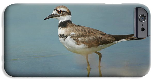 Elegant Wader IPhone 6s Case by Fraida Gutovich