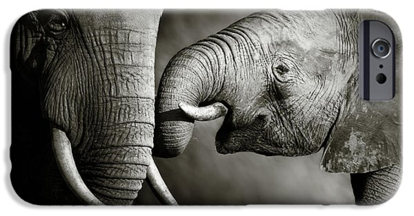 Animals iPhone 6s Case - Elephant Affection by Johan Swanepoel
