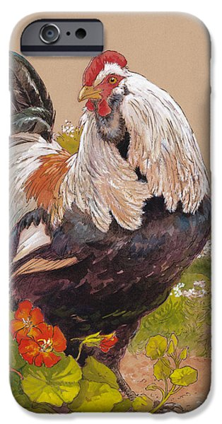 Chicken iPhone 6s Case - Emperor Norton by Tracie Thompson
