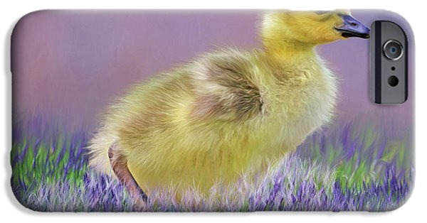 Gosling iPhone 6s Case - Exploring Spring by Donna Kennedy