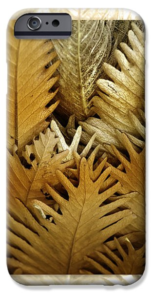 iPhone 6s Case - Feeling Nature by Holly Kempe