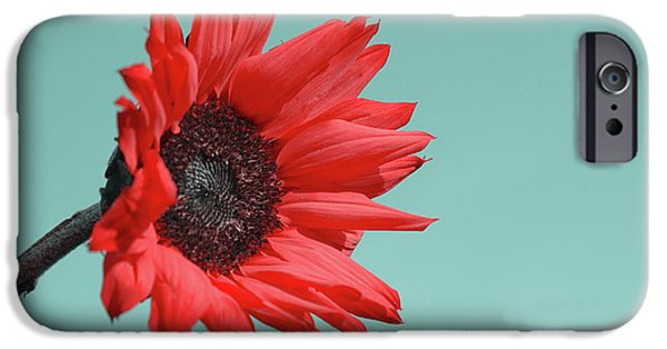 Flowers iPhone 6s Case - Floral Energy by Aimelle