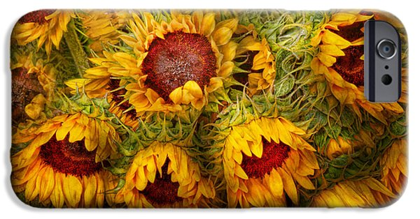 Flowers - Sunflowers - You're My Only Sunshine IPhone Case by Mike Savad