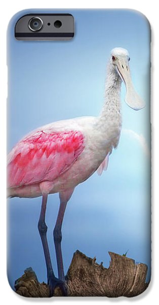 Foggy Morning Spoonbill IPhone 6s Case