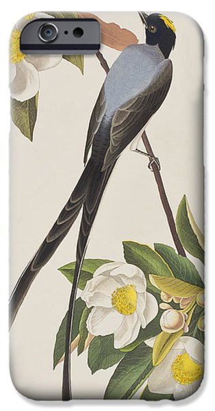 Fork-tailed Flycatcher  IPhone 6s Case