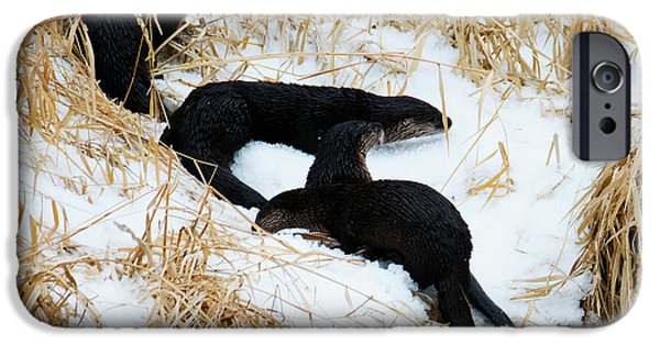 Otter iPhone 6s Case - Four Ashore by Mike Dawson