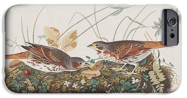 Fox Sparrow IPhone 6s Case by John James Audubon
