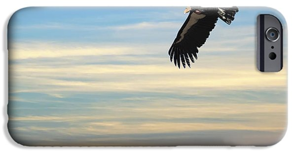 Free To Fly Again - California Condor IPhone 6s Case by Daniel Hagerman