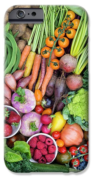 Fruit And Veg IPhone 6s Case by Tim Gainey