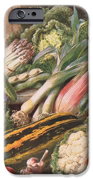 Garden Vegetables IPhone 6s Case by Louis Fairfax Muckley