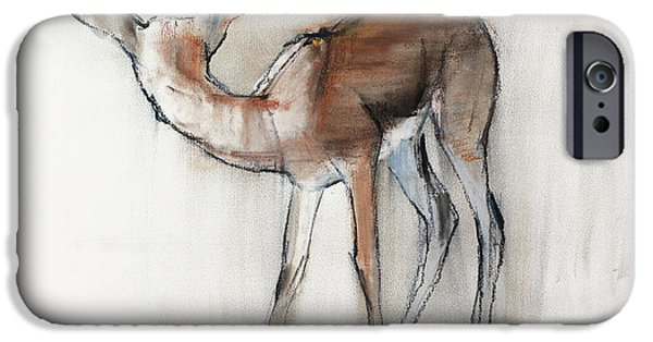 Gazelle Fawn  Arabian Gazelle IPhone 6s Case by Mark Adlington
