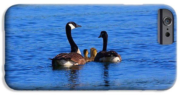 Gosling iPhone 6s Case - Geese Family by Lisa Wooten
