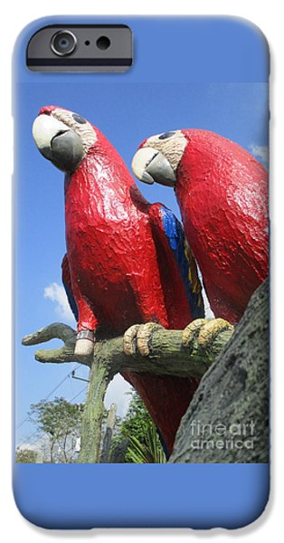 Giant Macaws IPhone 6s Case by Randall Weidner
