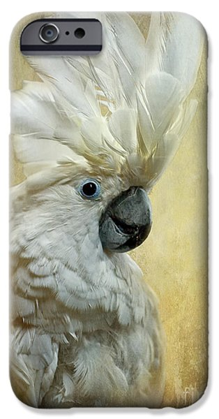 Parrot iPhone 6s Case - Glamour Girl by Lois Bryan