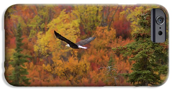 Glide Path IPhone 6s Case by Ed Boudreau