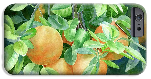 Grapefruit With Background IPhone 6s Case by Sharon Freeman