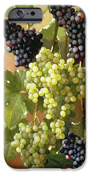 Grapes IPhone 6s Case by Edward Chalmers Leavitt
