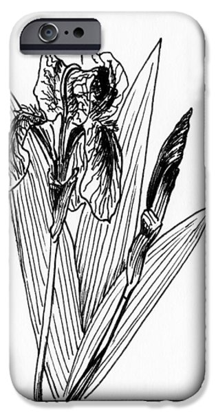 Graphic Iris IPhone 6s Case by Masha Batkova