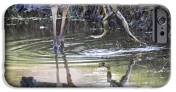 Great Blue Heron Vs Huge Frog IPhone 6s Case by Ricky L Jones