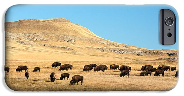 Great Plains Buffalo IPhone 6s Case by Todd Klassy