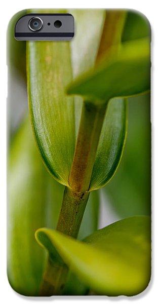 New Leaf iPhone 6s Case - Green Stork by Az Jackson