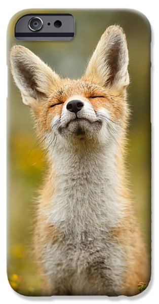 Happy Fox IPhone 6s Case
