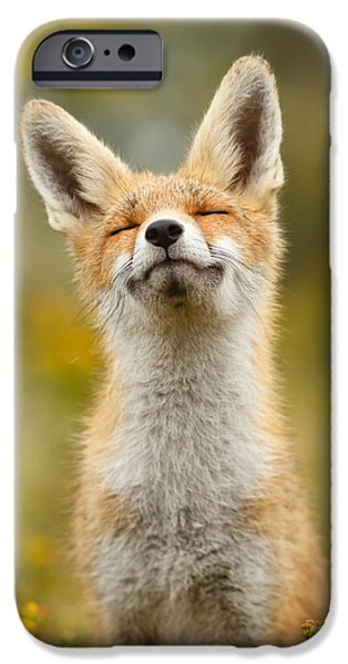 Happy Fox IPhone 6s Case by Roeselien Raimond