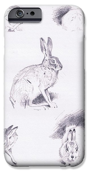 Hare Studies IPhone 6s Case by Archibald Thorburn
