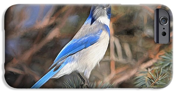 Bluejay iPhone 6s Case - Here's Looking At You,  Kid by Donna Kennedy