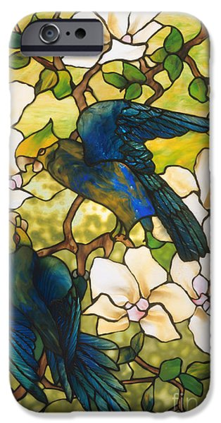 Hibiscus And Parrots IPhone 6s Case