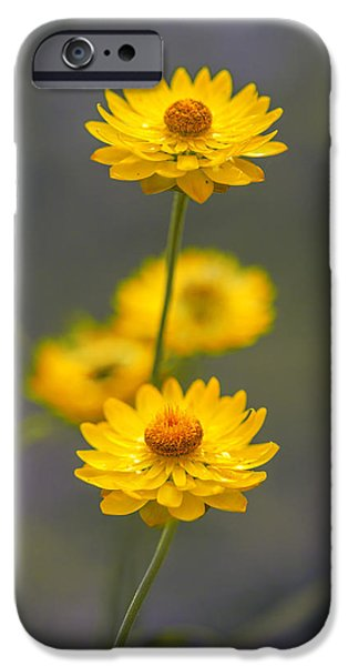 Hillflowers IPhone 6s Case by Az Jackson