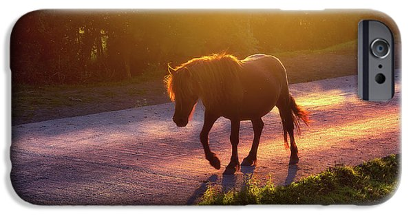 Horse iPhone 6s Case - Horse Crossing The Road At Sunset by Mikel Martinez de Osaba