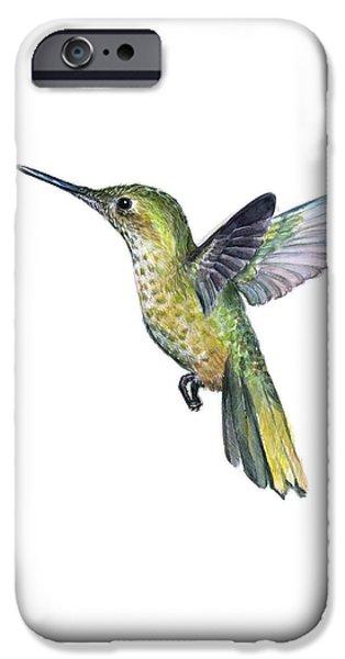 Hummingbird iPhone 6s Case - Hummingbird Watercolor Illustration by Olga Shvartsur