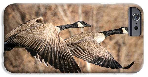 I'm Right Behind Ya IPhone 6s Case by Donna Kennedy