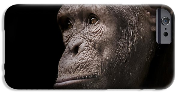 Chimpanzee iPhone 6s Case - Indignant by Paul Neville