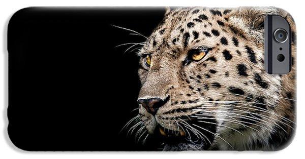 Leopard iPhone 6s Case - Inner Strength  by Paul Neville