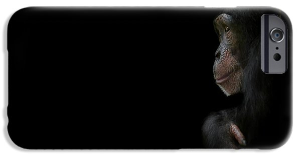 Chimpanzee iPhone 6s Case - Innocence by Paul Neville