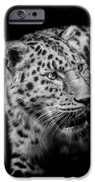 Leopard iPhone 6s Case - Intent by Paul Neville